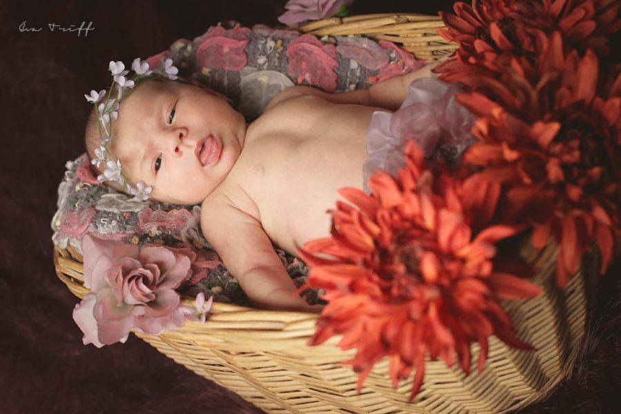 fotografii-artistice-bebelusi-12